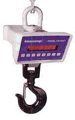 Intercomp Crane Scale