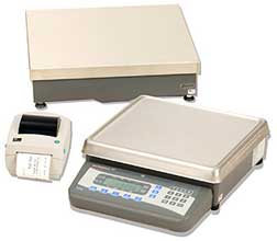 Weigh-Tronix Counting Scale