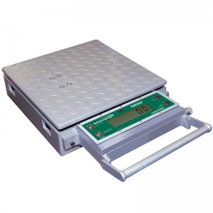 Intercomp Platform Scale