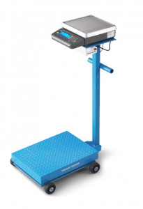 Weigh-Tronix Portable Floor Scale